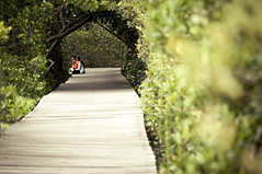 Just You and Me (Fajar Nurdiansyah) Tags: bali indonesia mangroveforest 55200mm