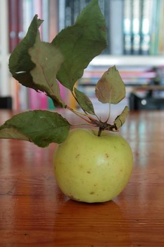 cassetta di mele