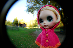 A Fisheye Look at Sparrow Blue