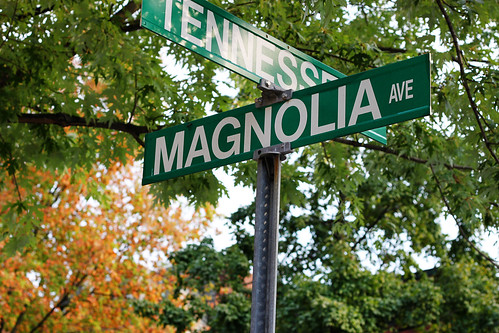 Autumn on Magnolia Avenue