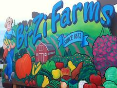 Bi-Zi Farms Pumpkin Patch and Corn Maze