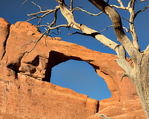 8x10 Arches IMG_0172 -1
