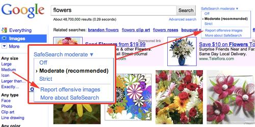 report google image back