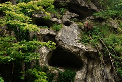 Face in the Rock (Mark Liddell) Tags: city travel trees summer sculpture cliff mountain tree monument face japan stone ji standing forest mouth season temple japanese climb eyes woods gate do king seasons hiking gates oz stones top buddha buddhist hill carving hike formation climbing return scream idol temples summit  nippon nome prefecture complex  tohoku yamadera yamagata forests nihon steep yama   dera tendai  dou  godaido godai  godaidou risshakuji ryushakuji risshaku ryuushakuji ryushaku ryuushaku