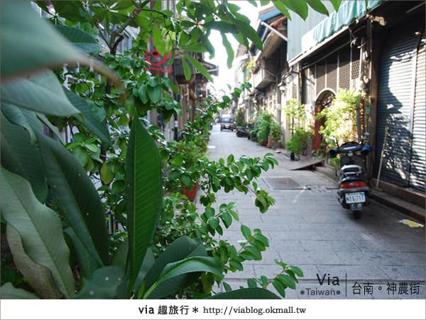 【台南神農街】一條適合慢遊、攝影、感受的老街2