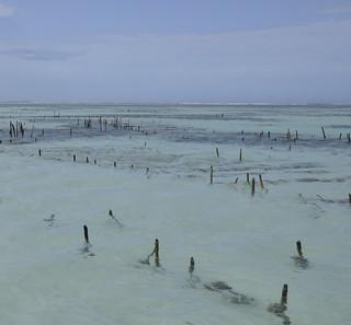 Indian Ocean Abstract