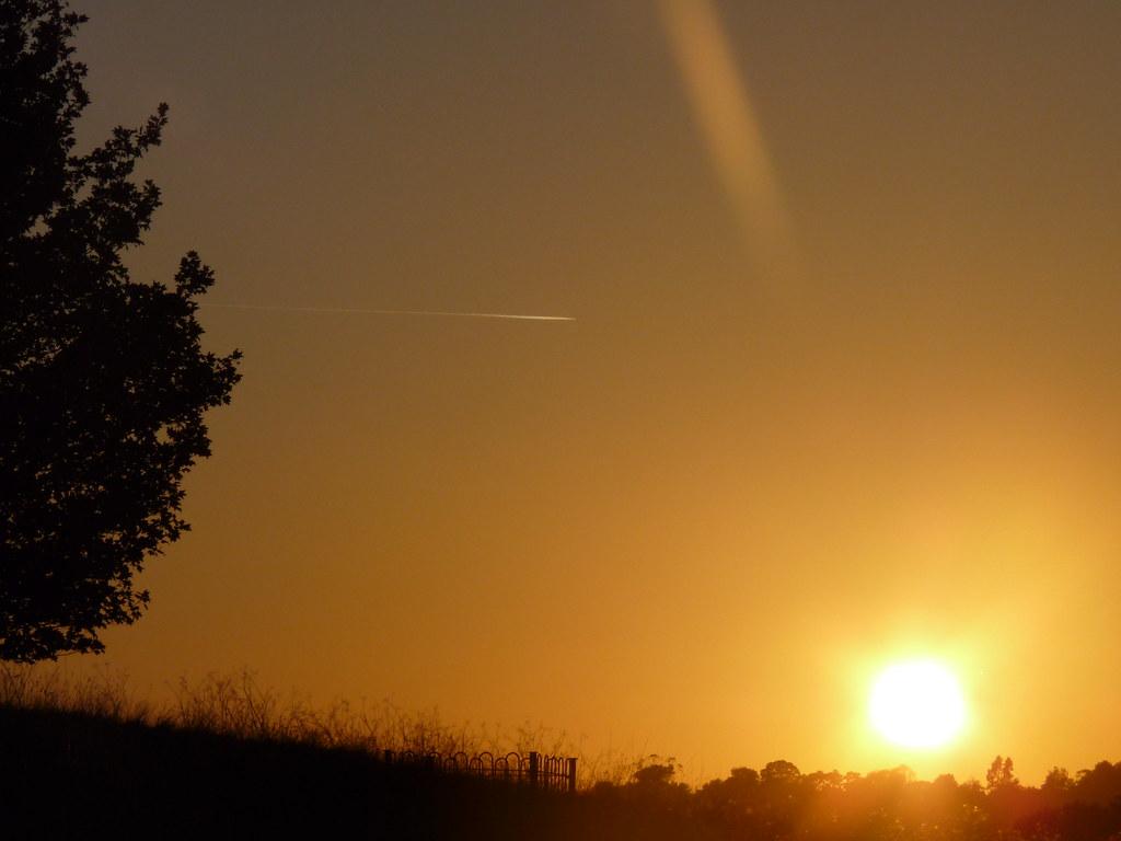 Warwick Racecourse Sunset.