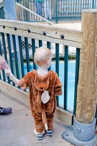 Zoo Boo 2010-248