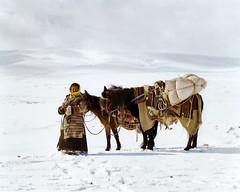 tibetanway_06