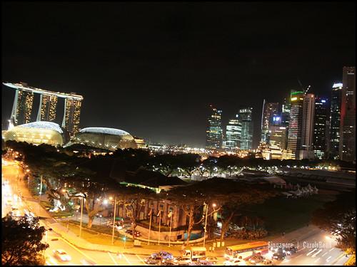 2010_1030 新加坡 024Singapore_44