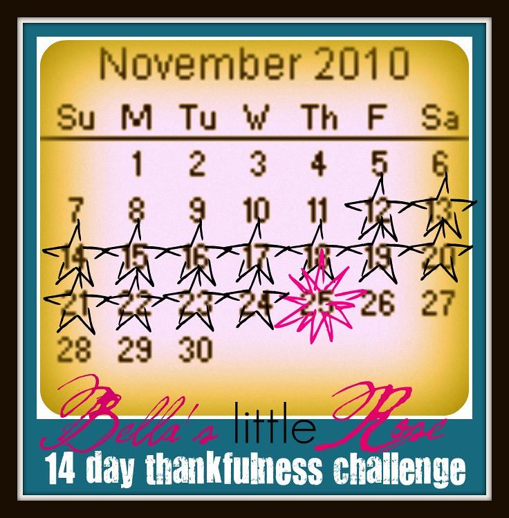 November-2010 thankfulness challenge