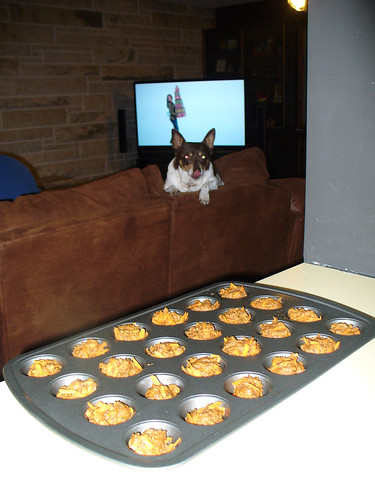 2010-11-12 - Get Well Muffins - 0003