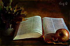The Book (EngQ) Tags: life autumn red news texture apple leaves photography book still good poetic bible eng biblia nikond80 murmurings nikond5000
