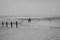 the last sighting (still~positive) Tags: film beach wales diy blackwhite sand scan mount negative reverse