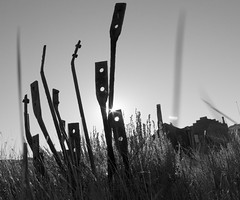Antiquated Desires (waxyleaves) Tags: morning blackandwhite sun building grass metal parts highcontrast holes mysterious ghosttown sunburst bodie rods verite vrit roadtripfall2010