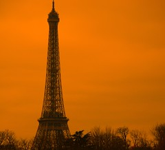 The Eiffel in awful weather....and heavy HDR (Let Ideas Compete) Tags: trees vacation paris france tree tower silhouette architecture french europe symbol eiffel icon structure february 2008 iconic hdr symbolic