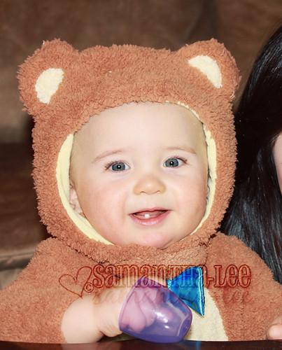 real baby bear
