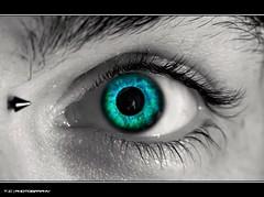 #324/365 Dante's Eye (iPh4n70M) Tags: paris france macro eye photography photo nikon photographer photographie dante oeil photograph micro tc 365 nikkor photographe 105mm nohdr d700 tcphotography ph4n70m iph4n70m tcphotographie