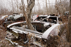 I wonder what was there first? (thomevered) Tags: auto old trees sky snow ontario canada cold tree car junk rust automobile flickr rusty forgotten wreck halton sigma1020 haltonregion mcleans mcleansautowreckers itsdefinatelyworththedrivetoacton