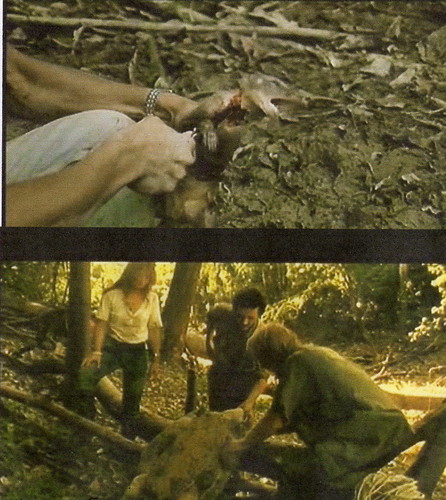 The real victims of Cannibal Holocaust