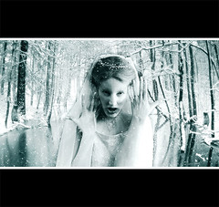 * The Snow Queen *