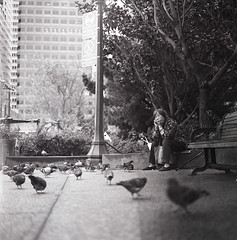 Birds Surround...(Explored) (DowntownRickyBrown) Tags: sf white 3 black birds zeiss self chinatown kodak tmax scan hasselblad explore 400 carl epson development planar 80mm v500 ilfosol 501c 28t