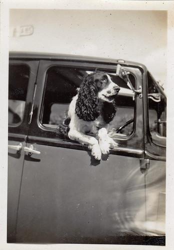 Touring, Scotland, 1935.