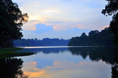MacRitchie Reservoir Park, Singapore (Eustaquio Santimano) Tags: park morning nature james evening singapore walks kim tan spot lovers reservoir edge waters excercise popular engineer built municipal seng macritchie philanthropist designed enthusiasts stolls bej rubyphotographer
