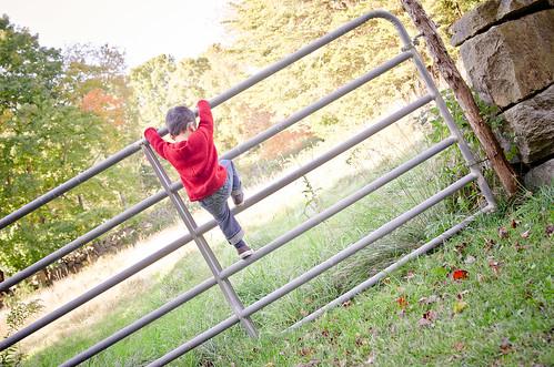 kelly_sweater-16
