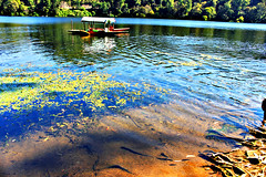 Shikara Boat at the Beautiful Kundala Lake, Munnar (luckydesi) Tags: lake boat munnar shikara kundala