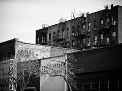 ESSEX ST BUILDINGS (DARREN MARTIN PHOTOGRAPHY) Tags: newyorkcity subway centralpark lowereastside 5thavenue midtown uptown brooklynbridge fireescape empirestatebuilding chryslerbuilding wallstreet flatironbuilding watertowers streetvendors newyorkcitysubway newyorktaxi katzsdelicatessen newyorkphotos newyorkcitywatertowers newyorkcitypictures newyorkcitypics picturesandphotographsofnewyorkcity