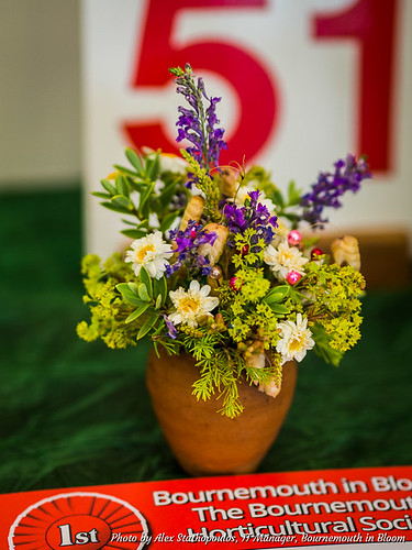2017 Summer Flower Show 07