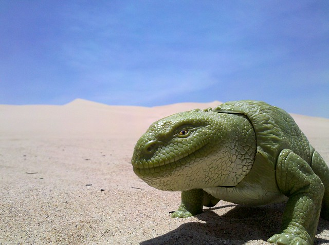 2010-06-18 Tatooine Dewback