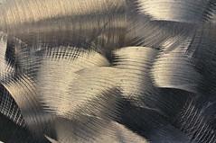 Rondeurs... (Photographe Basilique-cathdrale-N-D-Qubec) Tags: orange brun contrastes focale tnbreux torsades brindilles