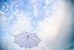 Umbrellaaaaaaaaaaah
