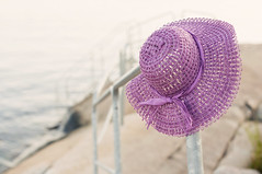 The purple hat (fence by the sea) (Karin A ~) Tags: hat purple tgif prop hff thepurplehat fencebythesea ormaybeitsarail