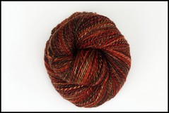 *Simple* 'Central Park in Fall' on Superwash BFL Hand Spun