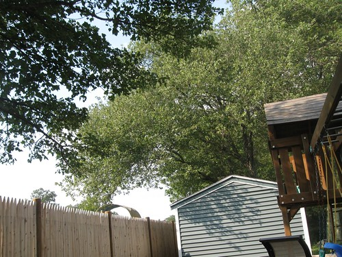 fence, shed, playhouse