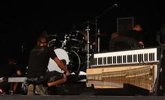 Dockville Festival 2010: Klee