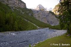 Trafoi (BZ), 2010, sui sentieri dell'Ortles. (Fiore S. Barbato) Tags: italy trekking sentiero alto trentino sud sdtirol bolzano altoadige tirolo adige ortles stelvio sentieri trafoi