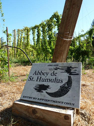 The Abbey de St. Humulus hop field, a.k.a. Moonlight Brewery