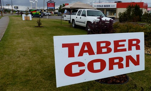 What's So Special About Taber Corn