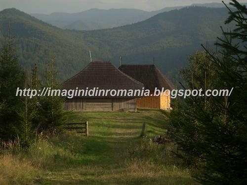 dealul Fatului-Marginea-- Furcoi Sucevita septembrie 2010 (46)