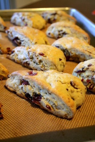 Lemon cranberry scone 001