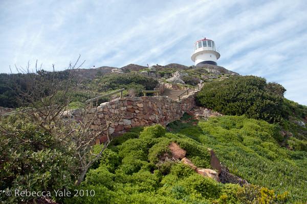 RYALE_Cape_Town-117