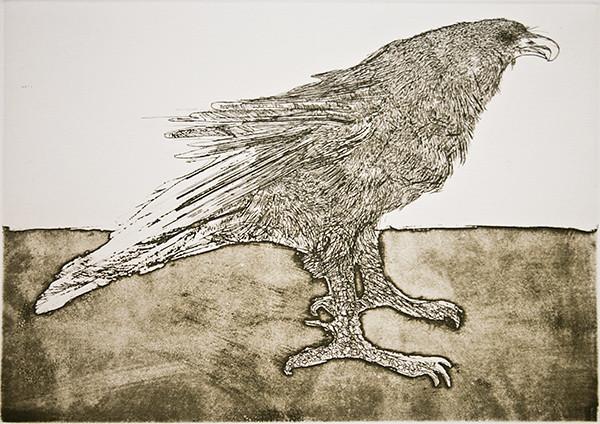 495_Eagle_9x12-5