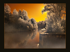 Blue Hour in Infrared (guenterleitenbauer) Tags: pictures blue sun mist water animal animals creek river landscape ir zoo austria tiere photo sterreich wasser flickr foto nebel image photos au picture images fotos hour infrared bild fluss landschaft sonne obersterreich tiergarten bilder tier zoos traun 2010 gnter wildpark infrarot g gunskirchen guenter leitenbauer wwwleitenbauernet
