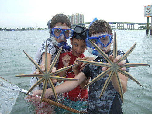 brothers with starfish