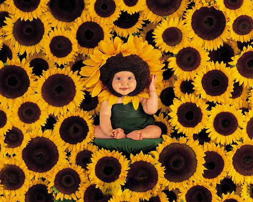 [フリー画像] 人物, 子供, 赤ちゃん, 向日葵・ヒマワリ, 201106021300