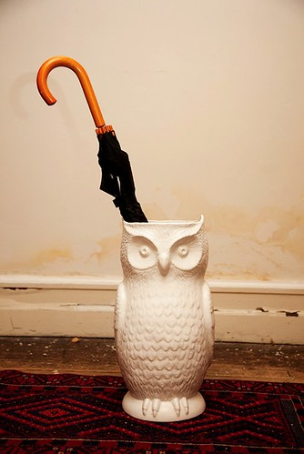 selby owl